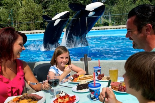 seaworld-orlando-vacation-dine-with-shamu